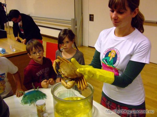 Kinder Uni 2010 - Krab głębinowy