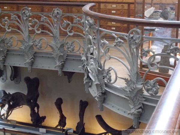 Galeria paleontologii, Paryż