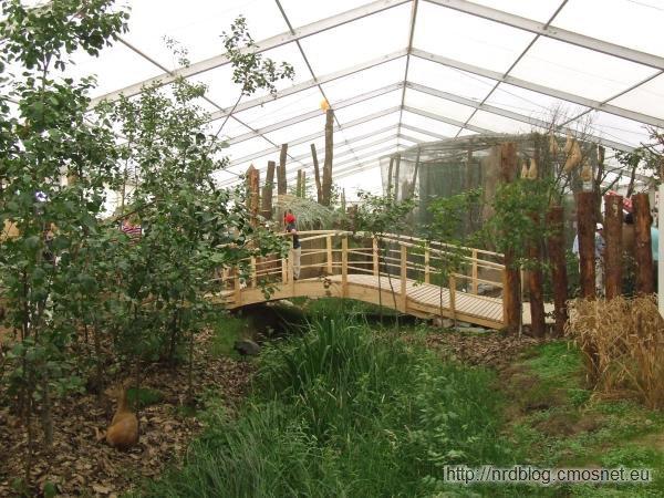 Hessentag 2011 Oberursel - wystawa o lesie