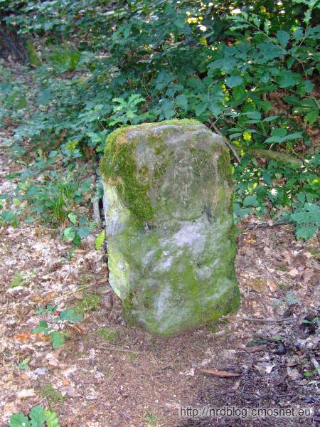 Kamien graniczny między terytorium Zakonu Krzyżackiego a miasta Frankfurt