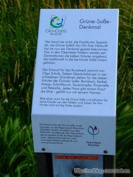 Pomnik Zielonego Sosu Frankfurckiego