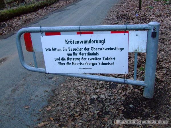 Droga zamknięta ze względu na wędrujące ropuchy szare